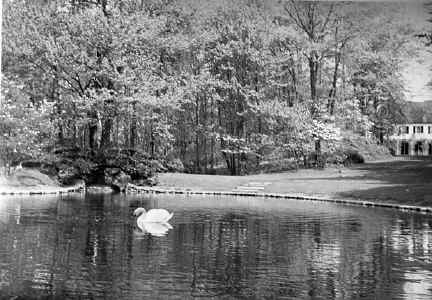 part7_tod_estate_pond_view.jpg (85258 bytes)